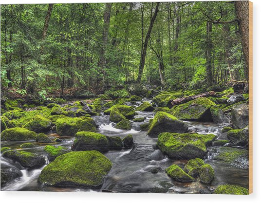 Deep Green River Wood Print