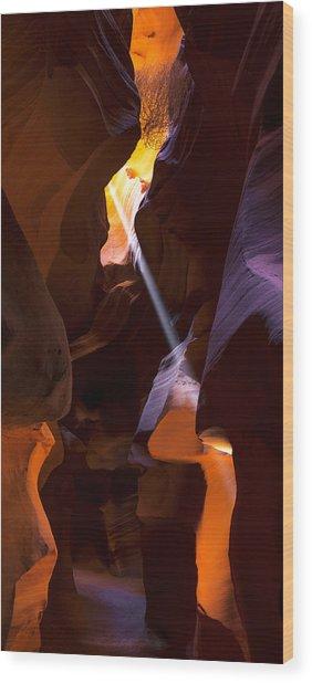 Deep In Antelope Wood Print