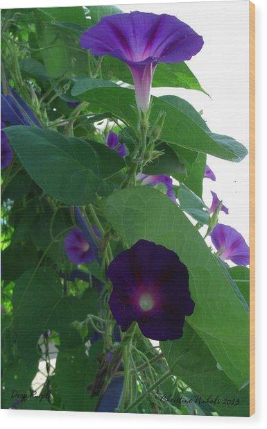 Deep Purple Morning Wood Print