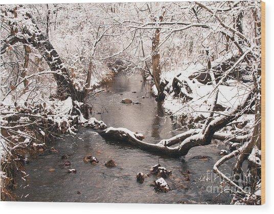Deep Run In Winter Wood Print