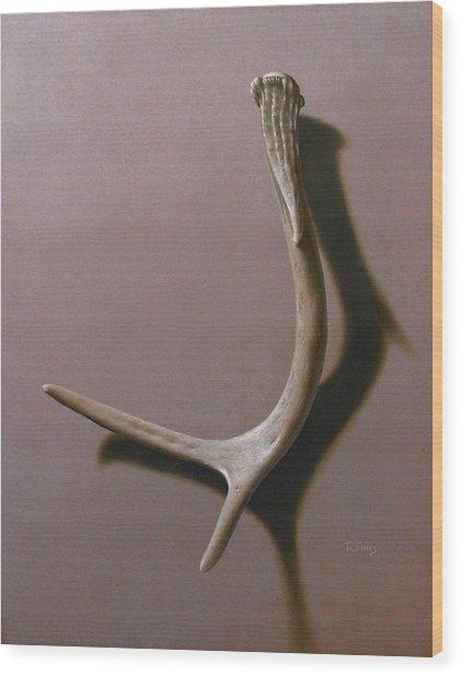 Deer Antler Wood Print by Timothy Jones