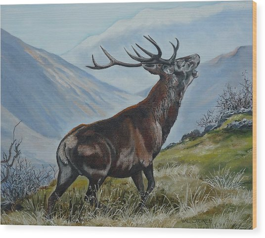 Deer Country Wood Print by Val Stokes
