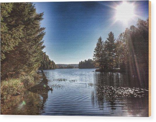 Deer Lake Narrows Wood Print by Lee Burgess