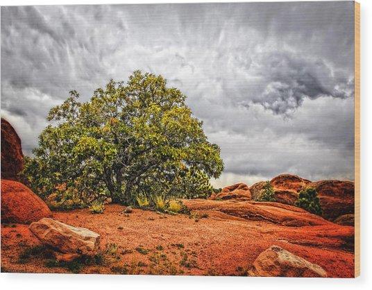 Defying The Storm Wood Print