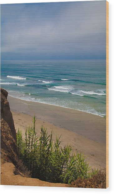 Del Mar Beach Wood Print