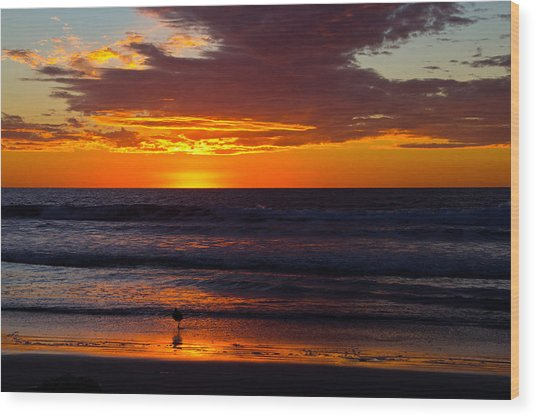 Del Mar Sunset Wood Print