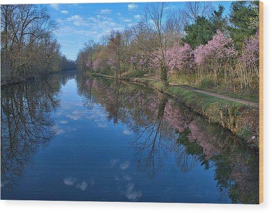 Delaware And Raritan Canal Turning Basim Wood Print