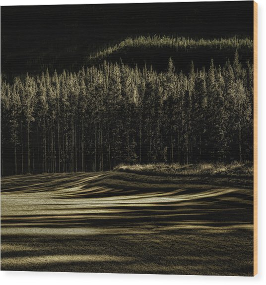 Delicious Fall Wood Print