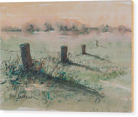 Delta 14 Wood Print
