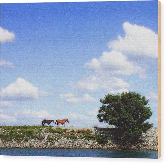Delta Range Wood Print by Ari Jacobs