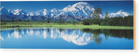 Denali National Park Ak Usa Wood Print