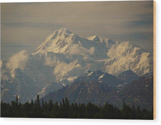Denali  Or Mt Mckinley Wood Print