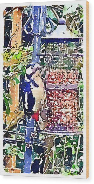 Dendrocopos Major 'great Spotted Woodpecker' Wood Print
