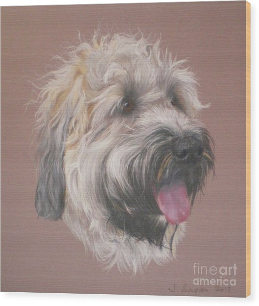 Dennis - Wheaten Terrier Wood Print by Joanne Simpson