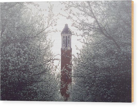 Wood Print featuring the photograph Denny Chimes Foggy Blossoms by Ben Shields