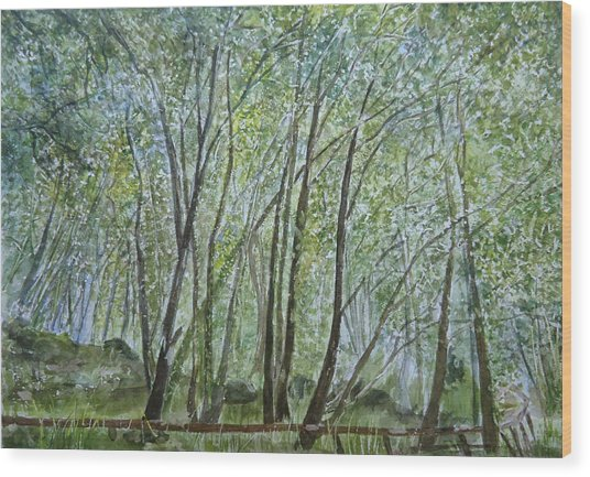 Dense Forest Wood Print