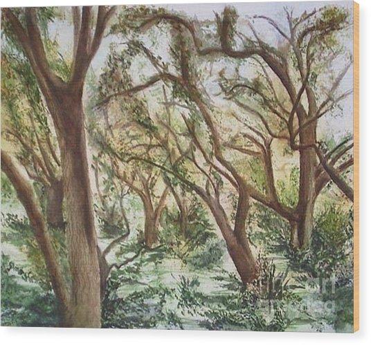 Descanso Oaks Wood Print