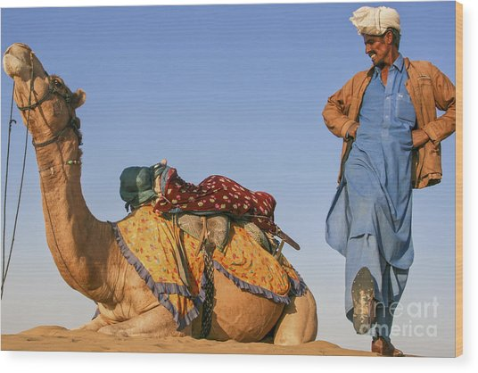 Desert Dance Of The Dromedary And The Camel Driver Wood Print