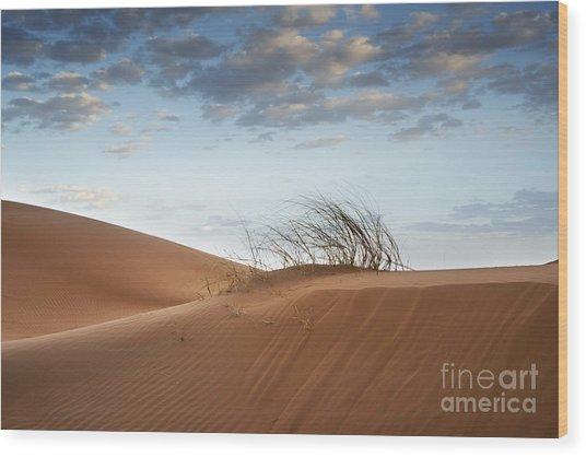 Desert Detail Wood Print