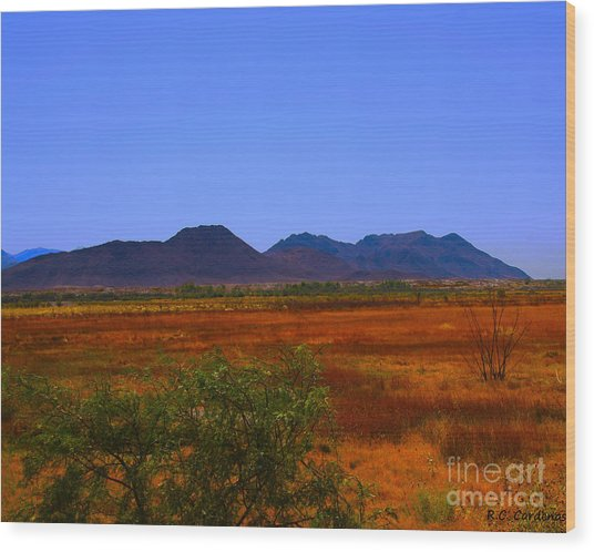 Desert Field Wood Print by Rebecca Christine Cardenas