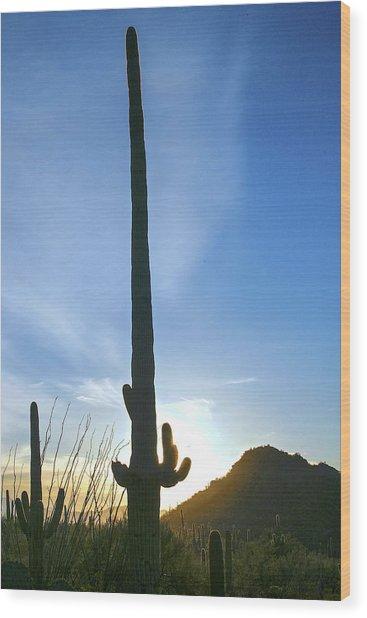 Desert Giant Wood Print