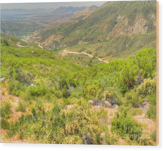 Desert Gulley Wood Print by Deborah Smolinske