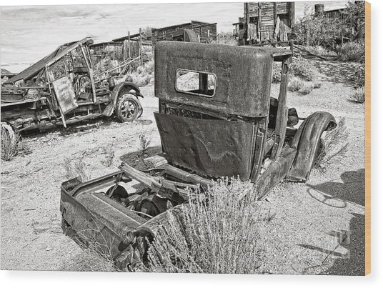 Desert Idle In Black And White Wood Print