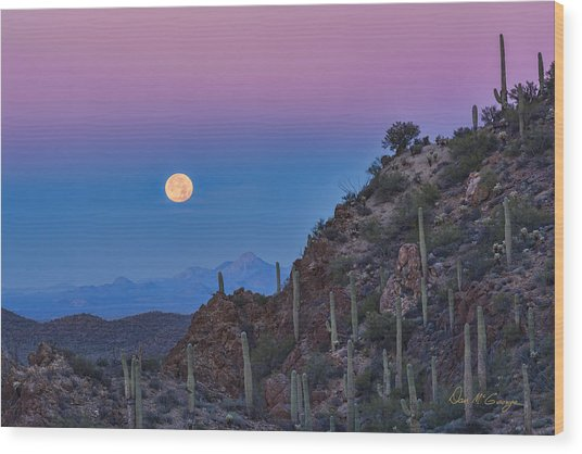 Desert Moonset Wood Print