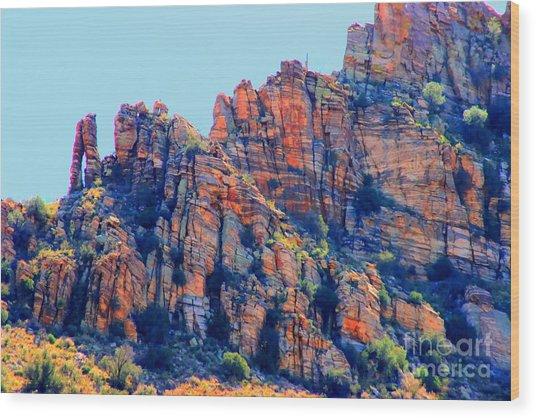 Desert Paint Wood Print