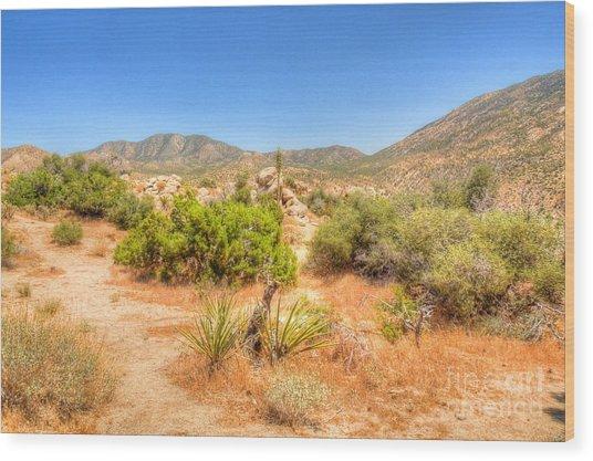 Desert Panorama Wood Print by Deborah Smolinske