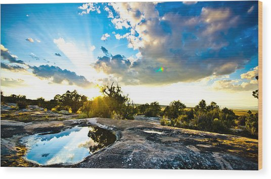 Desert Puddle Reflection Wood Print by Chase Taylor