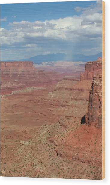 Desert Rain Wood Print