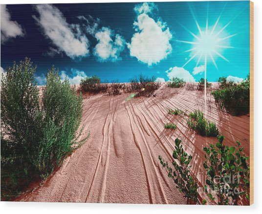 Desert Rays Wood Print