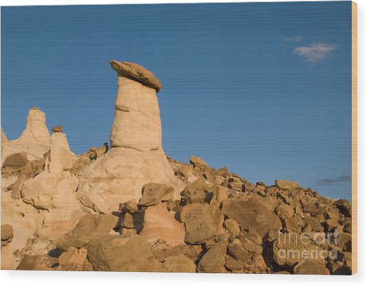 Desert Rock Garden Wood Print