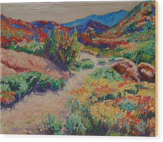 Desert Spring Flowers Namaqualand Wood Print