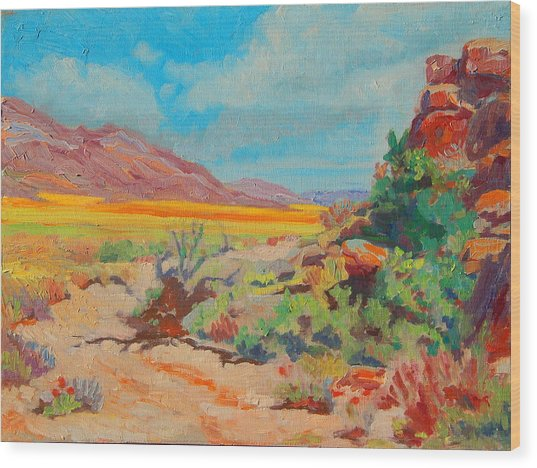 Desert Spring Flowers Namaqualand With Rock Outcrop Wood Print