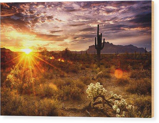 Desert Sunshine  Wood Print