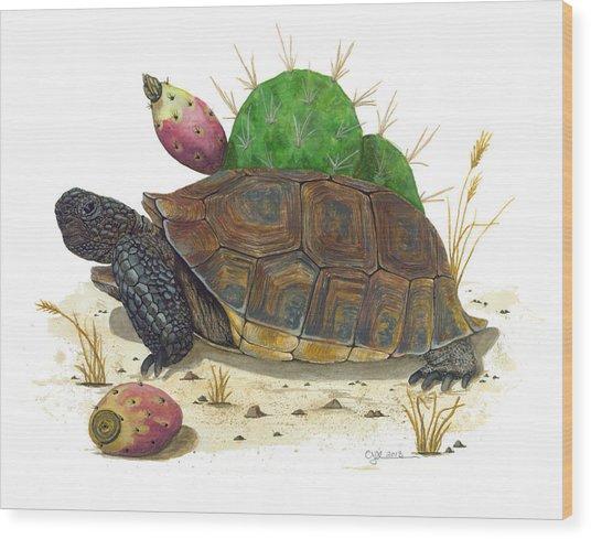 Desert Tortoise Wood Print