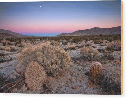 Desert Twilight Wood Print