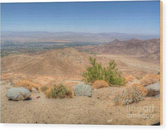 Desert View Wood Print by Deborah Smolinske