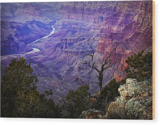 Desert View Sunset Wood Print