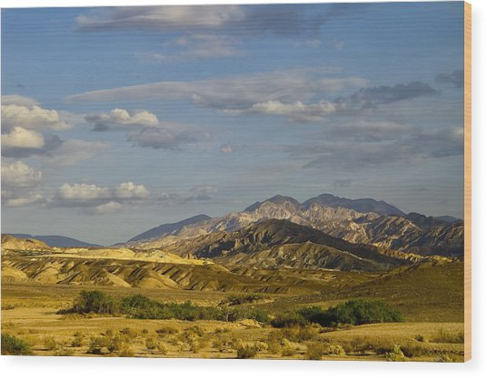 Desert Vista Wood Print