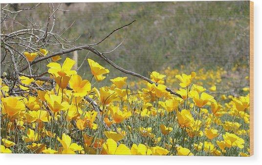 Desert Wild Flowers Wood Print