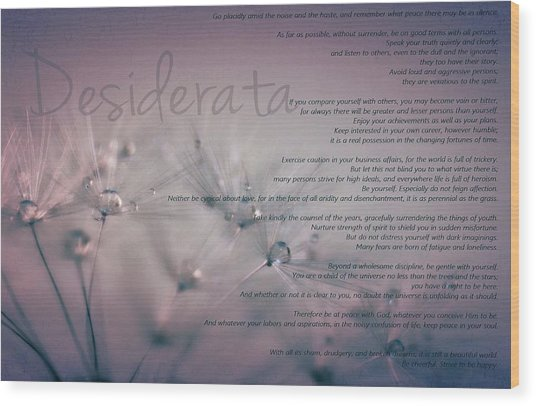 Desiderata - Dandelion Tears Wood Print