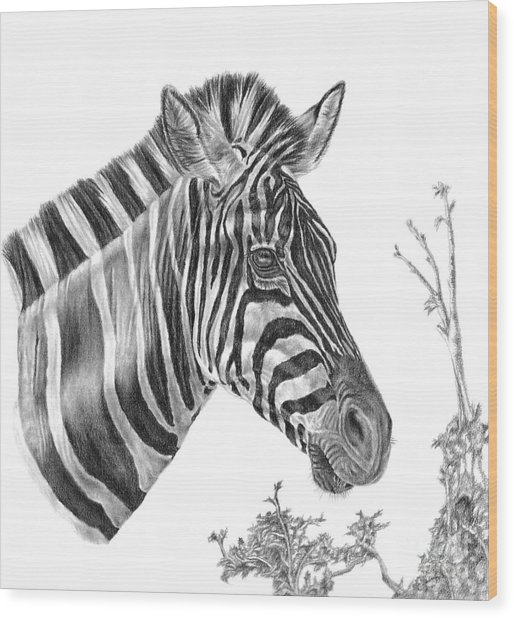 Designer Stripes Wood Print