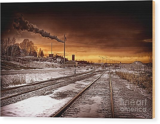 Desolate Wood Print