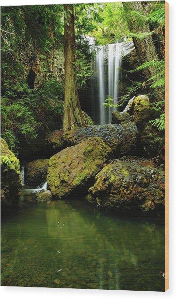 Devil Creek Falls  Wood Print