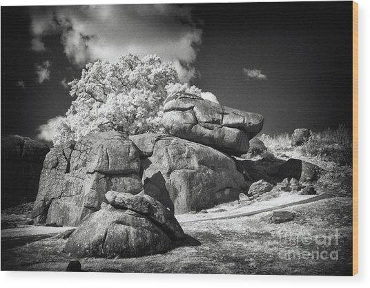 Devils Den - Gettysburg Wood Print