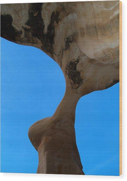 Devil's Garden-metate Arch 006 Wood Print