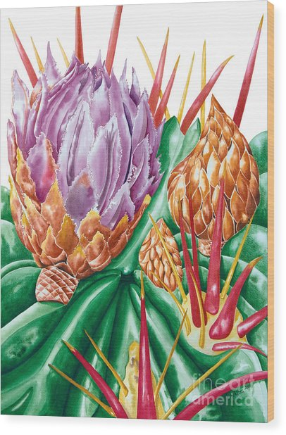 Devil's Tongue Cactus Flower Wood Print